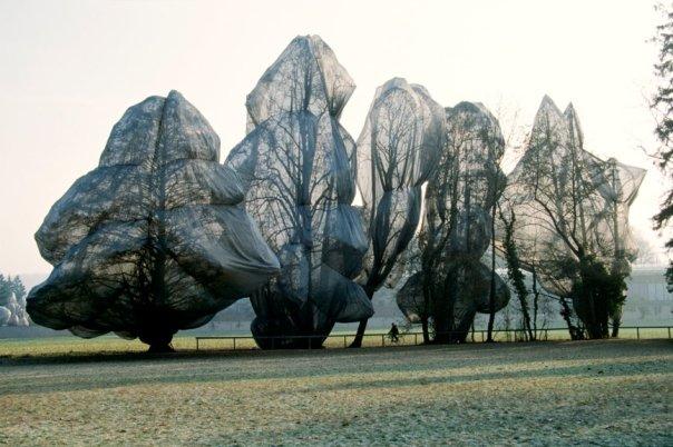tree_wrap